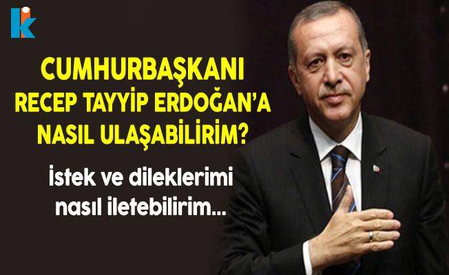 Photo of Cumhurbaşkanı Recep Tayyip Erdoğan'a Nasıl Ulaşabilirim? İstek ve Dileklerimi Nasıl İletebilirim?