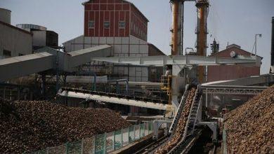 Photo of Türkiye Şeker Fabrikaları lise mezunu 227 işçi alımı yarın başlıyor!