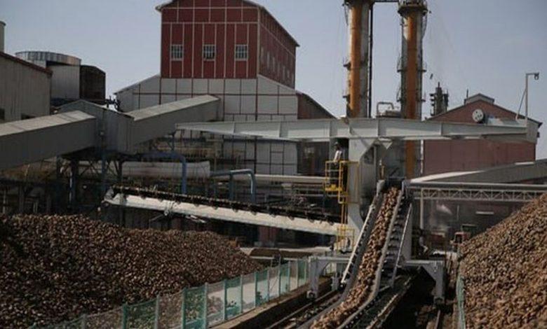 şeker fabrikaları işçi alımı