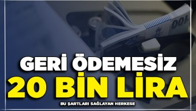 Photo of Devlet Bu Şartları Sağlayanlara Geri Ödemesiz 20 Bin Lira Veriyor